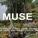 Issue #12 - Gardens