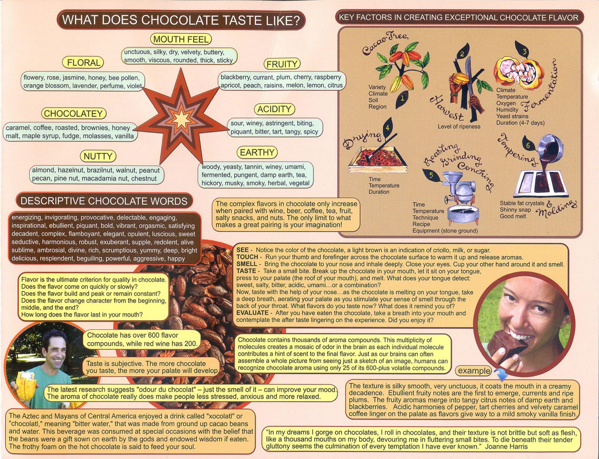 choco brochure side-c